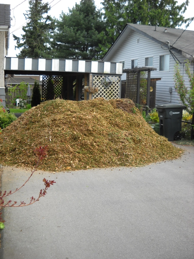 It's about 5' high, 10'across. That means probably about 10 cubic yards.