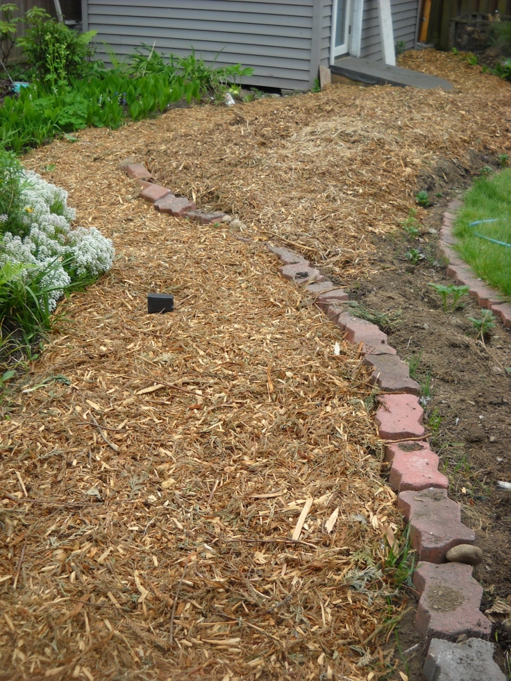 The path is to the left, the right is currently potato bed and will be a shrub border in the fall.