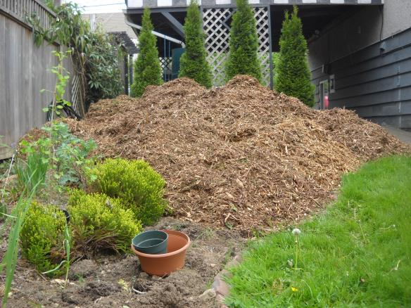 "...finally meeting up with the ""translocated mountain of mulch""!"