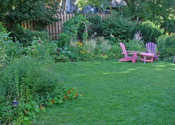 lawn sown with Dutch White Clover