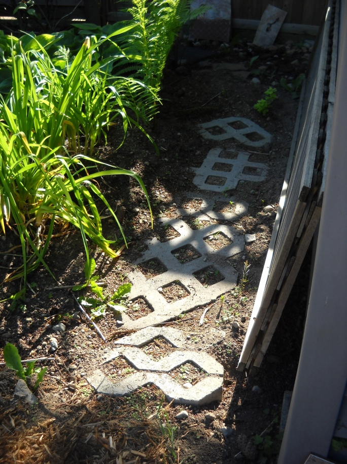 repurposed pavers leading around the back of the shade garden so I can access it.