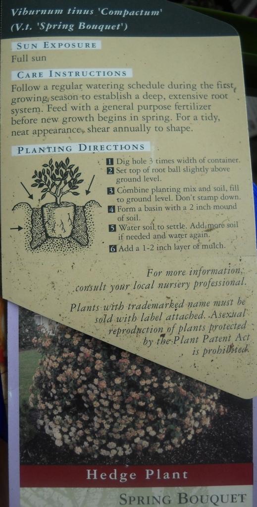 plant labels d