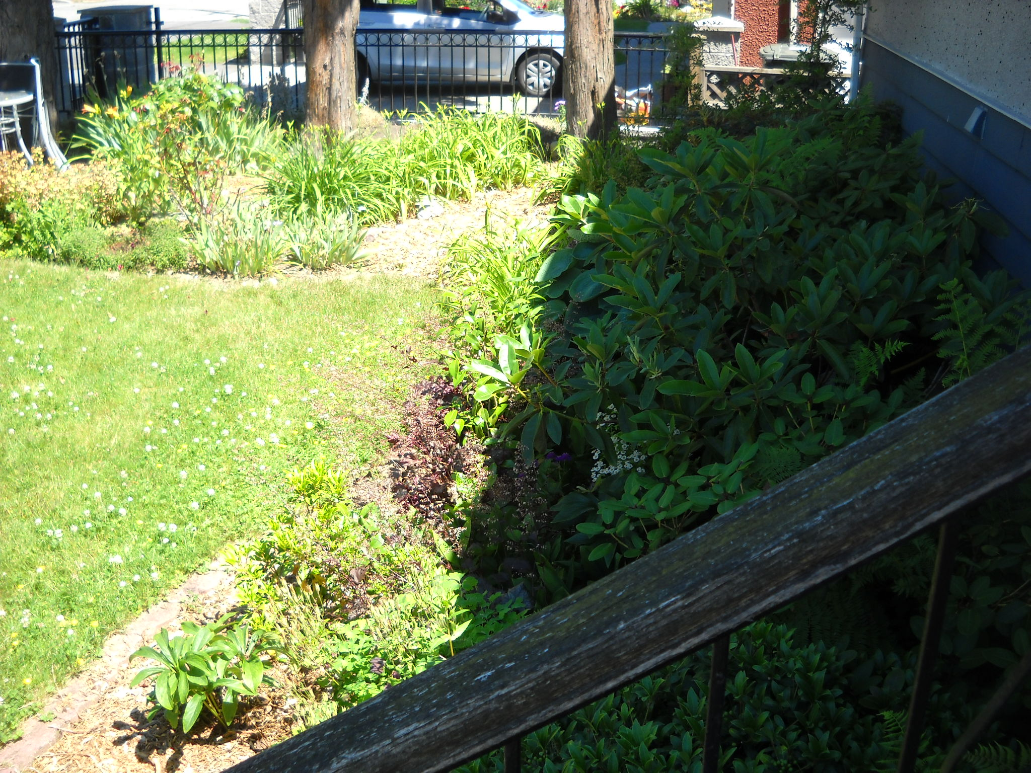 Shade Landscaping Ideas Zone 6 : Zone shade shrubs for front yard pictures submited images