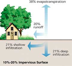 Small rural town with little development; runoff is doubled.