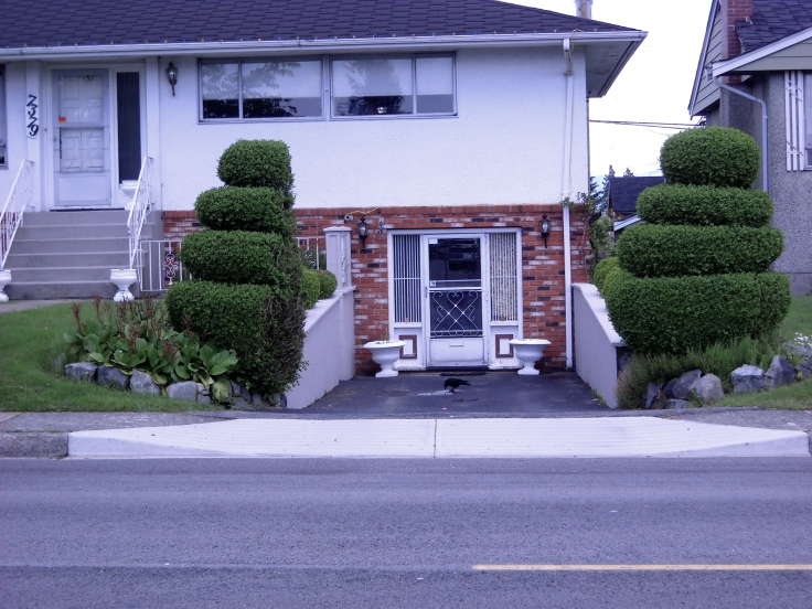 A lot of work went into these topiary'd trees--and to what purpose?