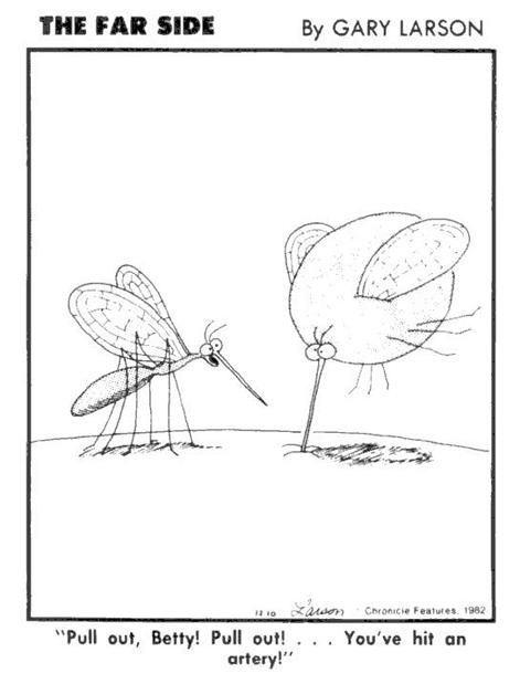 Larson Mosquito