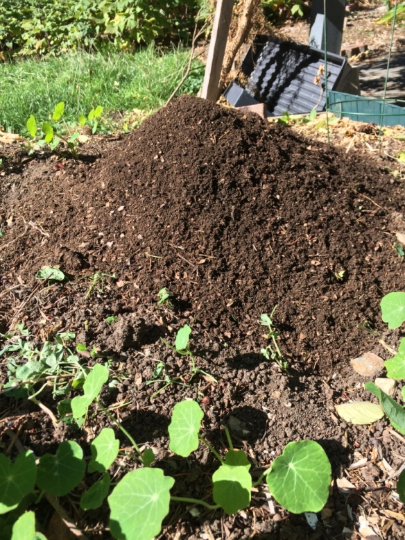Mound of compost ready to be spread.