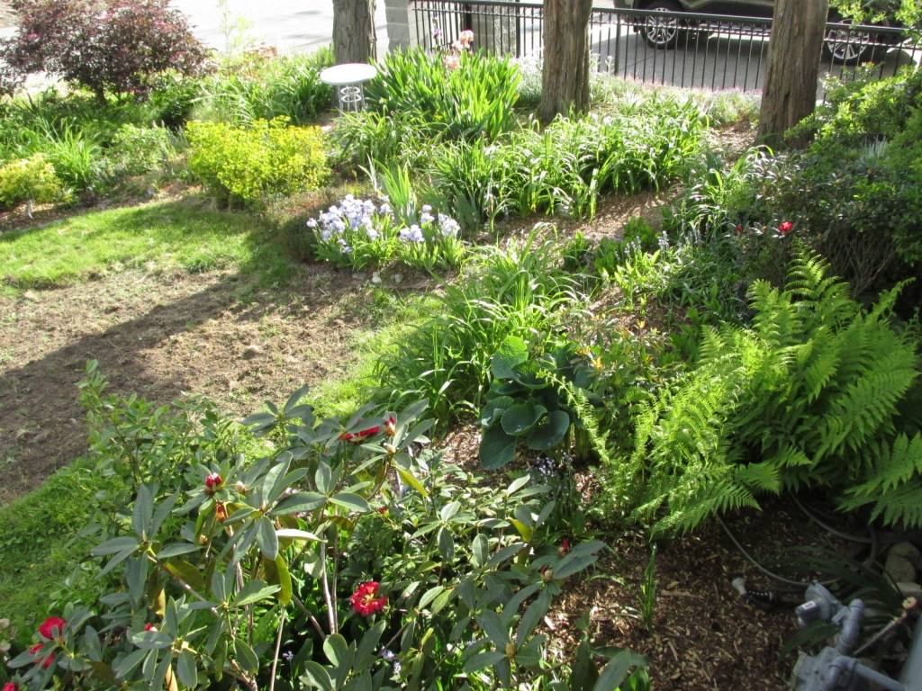 January 2016 real life garden solutions for Wish garden deep lung